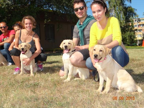 Младите кученца от серия