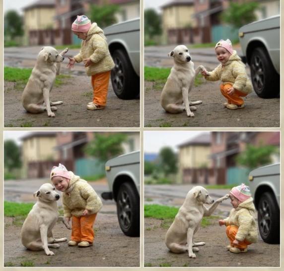 куче и малко дете