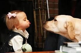 кучето като педагок