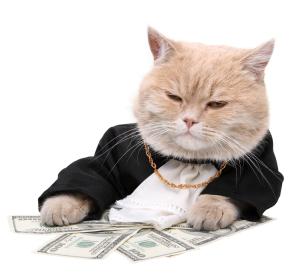 коте с пари