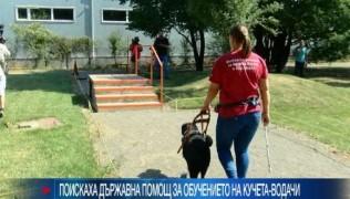 (Български) BIT TV – За ролята на кучетата водачи и асистенти в живота на хората с увреждания 28.08.2017