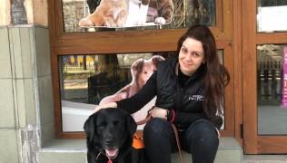 """(Български) Сърдечни благодарности на Десислава Войводова и """"Десс-Мар"""" за дарените кучешки лакомства и аксесоари!"""