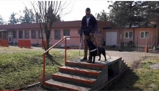 (Български) Horizonti.Podcast – За кучетата и хората Част 1. Служебните кучета в помощ на хората с увреждания 04.03.21
